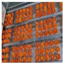 咸蛋黄自动拉伸膜真空包装机
