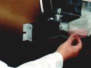 ELECTROTEK AW300SG厌氧培养箱
