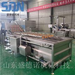SDN-800和田大枣清洗机