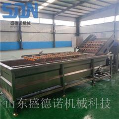 SDN-800百香果清洗机