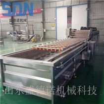 SDN-800全自动蔬菜清洗风干线