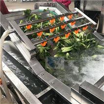 蔬菜清洗機-番茄清洗流水線