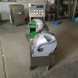 TJ301L小型多功能切菜机