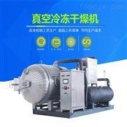 真空低温冷冻干燥机 真空冻干机