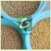 6FT-PB8型大豆黃豆脫皮磕瓣機