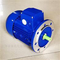 0.37KW清华中研紫光MS7112三相异步电机