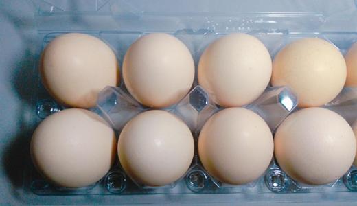 雞蛋產業規模攀升 分選、清洗設備帶來高品質
