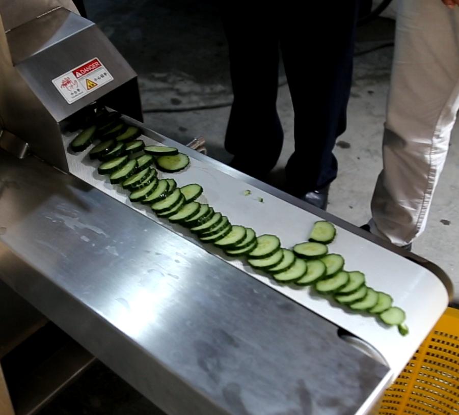 切片机切割蔬菜效果