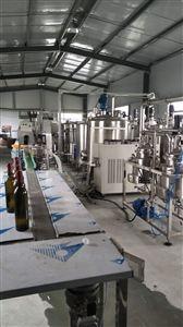 自动化小型果汁饮料生产线