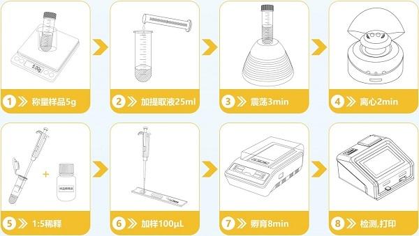 玉米赤霉烯酮快速测定仪检测流程