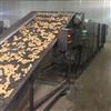 HG-6500野生蘑菇三层烘干机