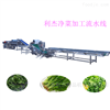 LJQX-4500香菜净菜加工成套设备 * 专业定制 山野菜净菜加工流水线